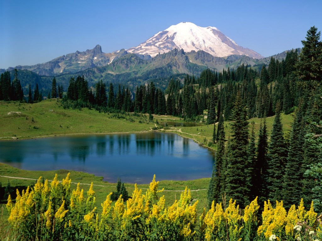 Washington State Nature